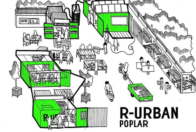 R-Urban Poplar